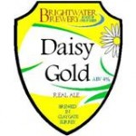 Brightwater Daisy Gold Pump Clip